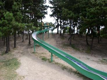 兵庫県立甲子園浜海浜公園の画像2