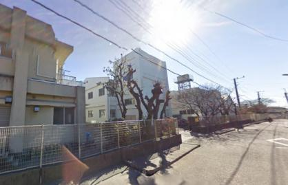 茅ヶ崎市立 松林小学校の画像1