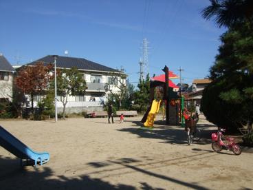 松の木公園の画像1