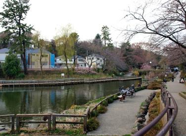 白幡池公園の画像1