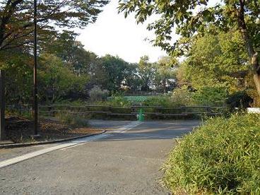 菊名池公園の画像2