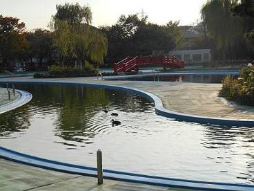 菊名池公園の画像4
