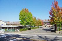 天理大学杣之内キャンパス