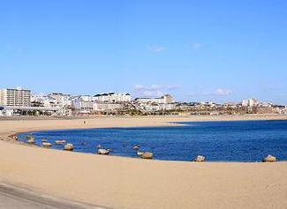 大蔵海岸海水浴場の画像1