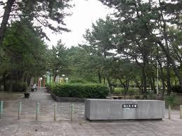 松が丘公園の画像1