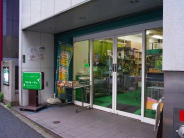 小鳥・小動物のお店 「リトルーチェ」の画像1