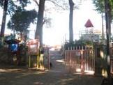 くまの幼稚園