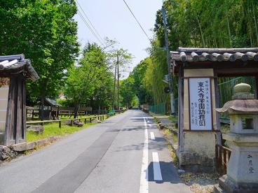 東大寺学園幼稚園の画像4