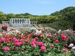 神戸市立須磨離宮公園の画像1