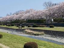 中央運動公園
