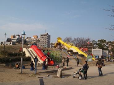 扇町公園の画像2