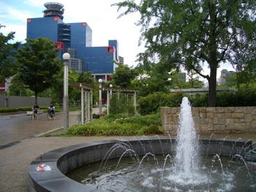 扇町公園の画像3