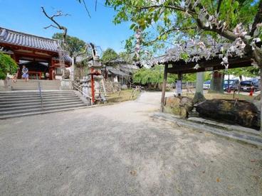 氷室神社(ひむろじんじゃ)の画像2