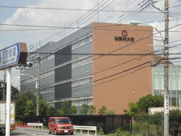 桜美林大学の画像3