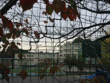 町田市立鶴川第二小学校の画像1