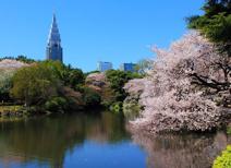 新宿御苑公園