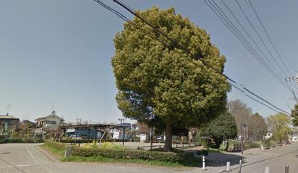 矢川いこいの広場の画像1