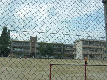 天理市立 前栽小学校の画像3