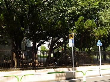 豊島区立 清和小学校の画像4
