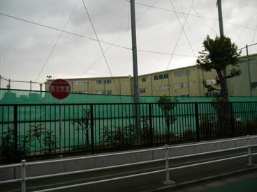 豊島区立 目白小学校の画像4