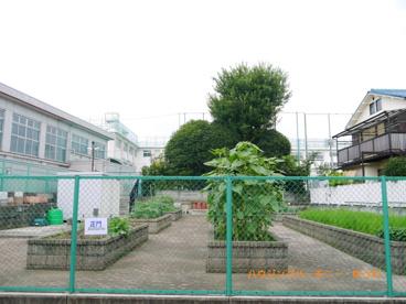 豊島区立 長崎小学校の画像4