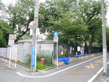 豊島区立 さくら小学校の画像3