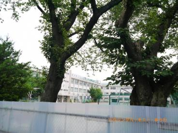 豊島区立 さくら小学校の画像4