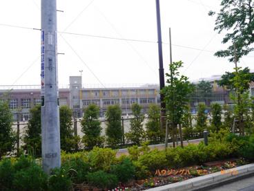 豊島区立 西池袋中学校の画像4