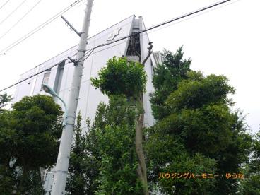 豊島区立 明豊中学校の画像3