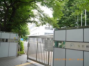 東京都立 千早高等学校の画像2