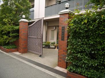 私立 川村小学校の画像1