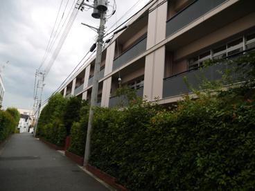 私立 川村小学校の画像4