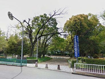 中の島公園の画像1