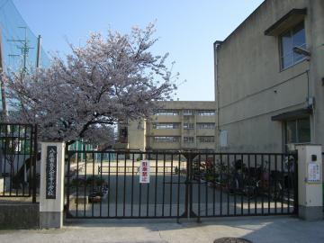 八尾市立 久宝寺小学校の画像2