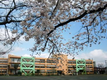 日野第一小学校の画像1