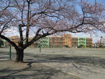 日野第二小学校