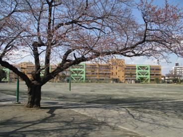 日野第二小学校の画像1