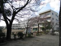 南平小学校