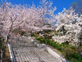 兵庫県立播磨中央公園球技場