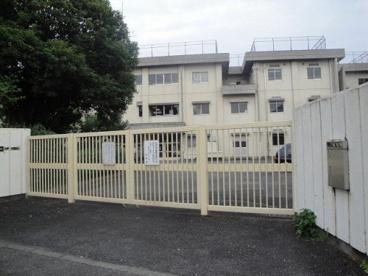 仲田小学校の画像1