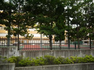私立 城西大学付属城西中学校の画像5