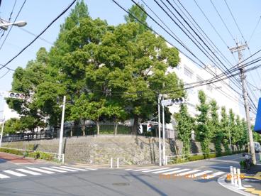 板橋区立 志村第二小学校の画像5
