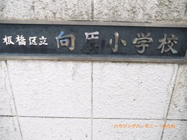 板橋区立 向原小学校の画像1