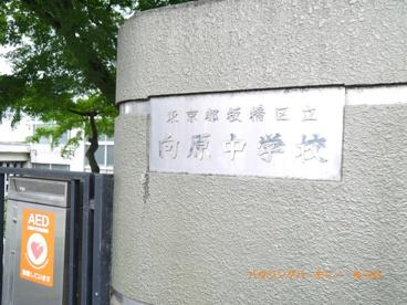 板橋区立 向原中学校の画像1