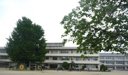 八尾市立 安中小学校の画像3