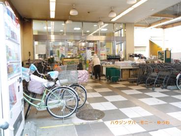 コモディ イイダ 大山店(ハッピーロード)の画像2