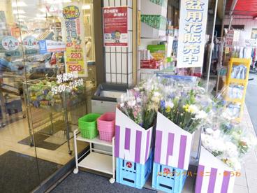 コモディ イイダ 徳丸店の画像4