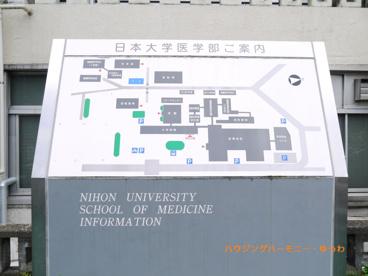 日本大学板橋病院の画像2