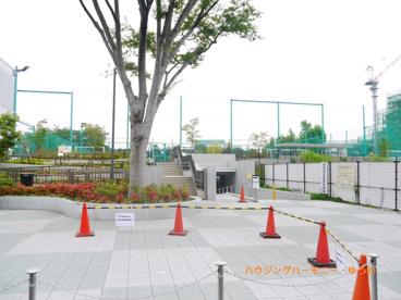 南長崎スポーツ公園の画像4