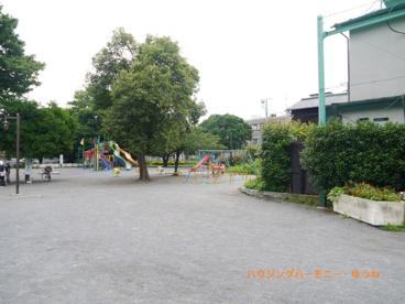 千早フラワー公園の画像5